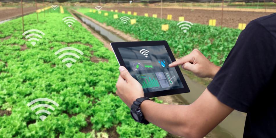 El futuro del sector agropecuario está en las nuevas tecnologías